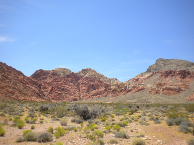 Red Rock Canyon, NV 010